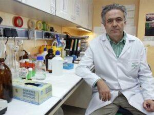Emilo Alba, nuevo investigador de cáncer de mama de Ciberonc